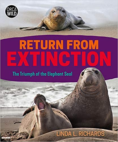 Return From Extinction: the Triumph of the Elephant Seals